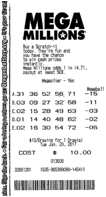 Dutch Mega Millions Ticket