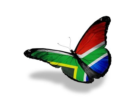 South African flag butterfly