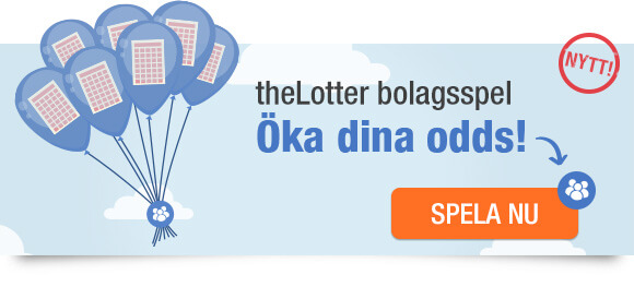 Lottery Syndicates at theLotter